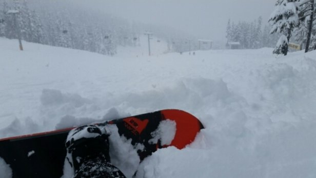 Whistler Blackcomb - Thursday was incredible, 12 inches Wednesday night and white all day. - ©anonymous