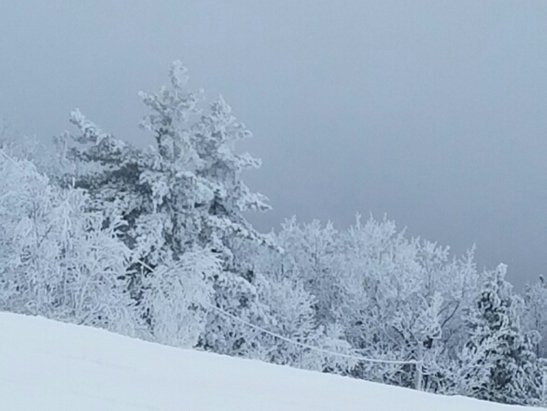 Shawnee Peak - Lots of fresh Snow, crowds are minimal little foggy at top. - ©anonymous