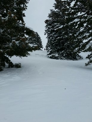 Powder Mountain - Epic Pow Wow Day - ©anonymous