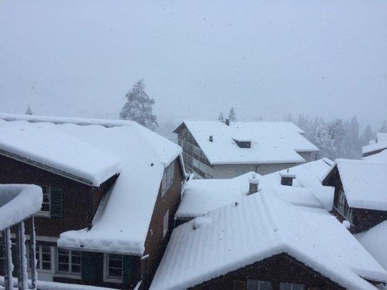 Ca. 30cm Neuschnee gab es in Adelboden am 07. März - ©Daniel Bieniossek