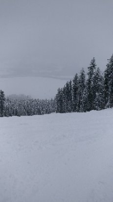 Revelstoke Mountain Resort - Mid-mountain pic. Snowed all day. Powder, but still some ice under the snow. Think the whole town was there today - ©Sk