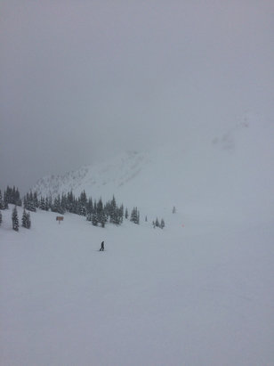 Kicking Horse - Had great two days of skiing.Snowing with low visibility at the top , warm at the bottom . - ©AJs iPhone