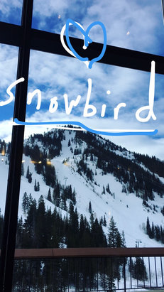 Snowbird - Sunny 63° at base. Mineral Basin chair at 10:00 15 min line. The Gads were really nice after 12:00 love the sun love UT  - ©Bill's iPhone