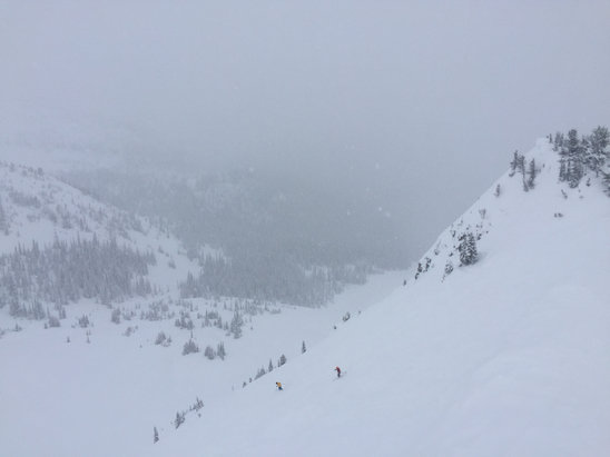 Kicking Horse - Crazy deep powder...top 2/3 of the hill was in great shape.  Still snowing at the end of the day.   - ©East Coaster
