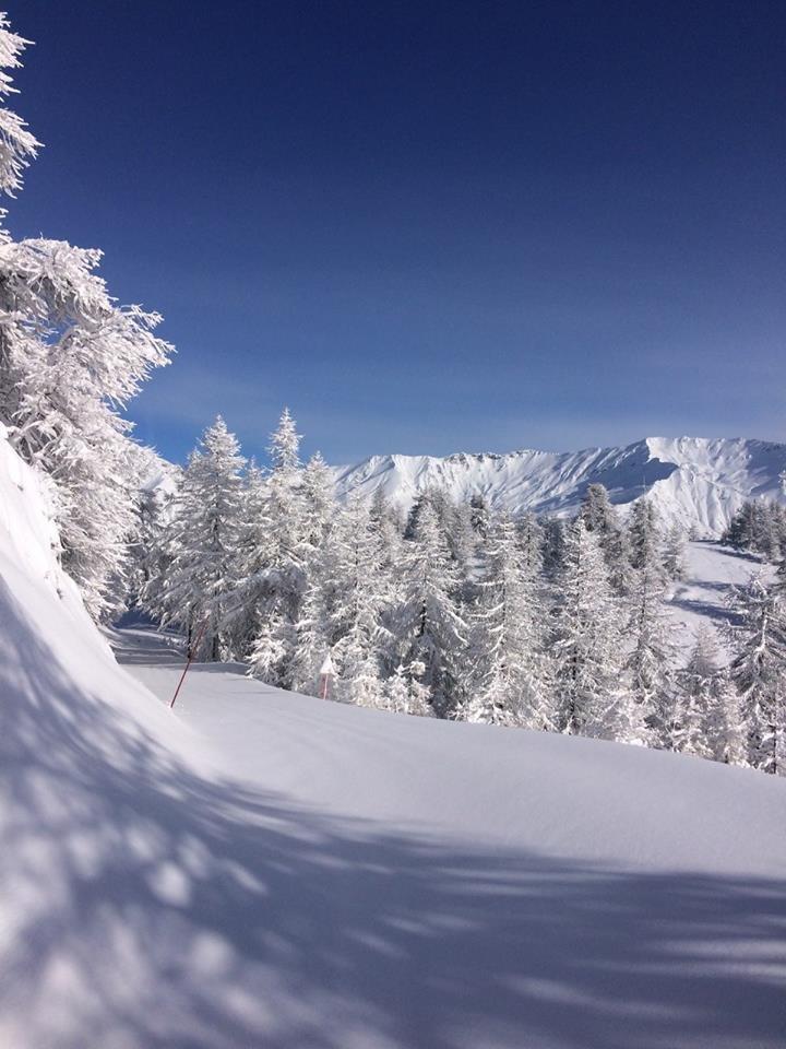 50cm Neuschnee im italienischen Bardonecchia - so sieht Winter aus!  - ©Bardonecchia Ski/Facebook