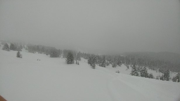 Mt. Hood Meadows - Went up there this past Friday, wasn't too crowded. Lots of good new powder up there - ©anonymous