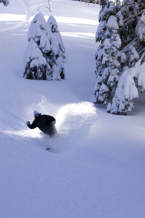 Photo Credit: Mountain High   powder skiing ski skier snowboard winter