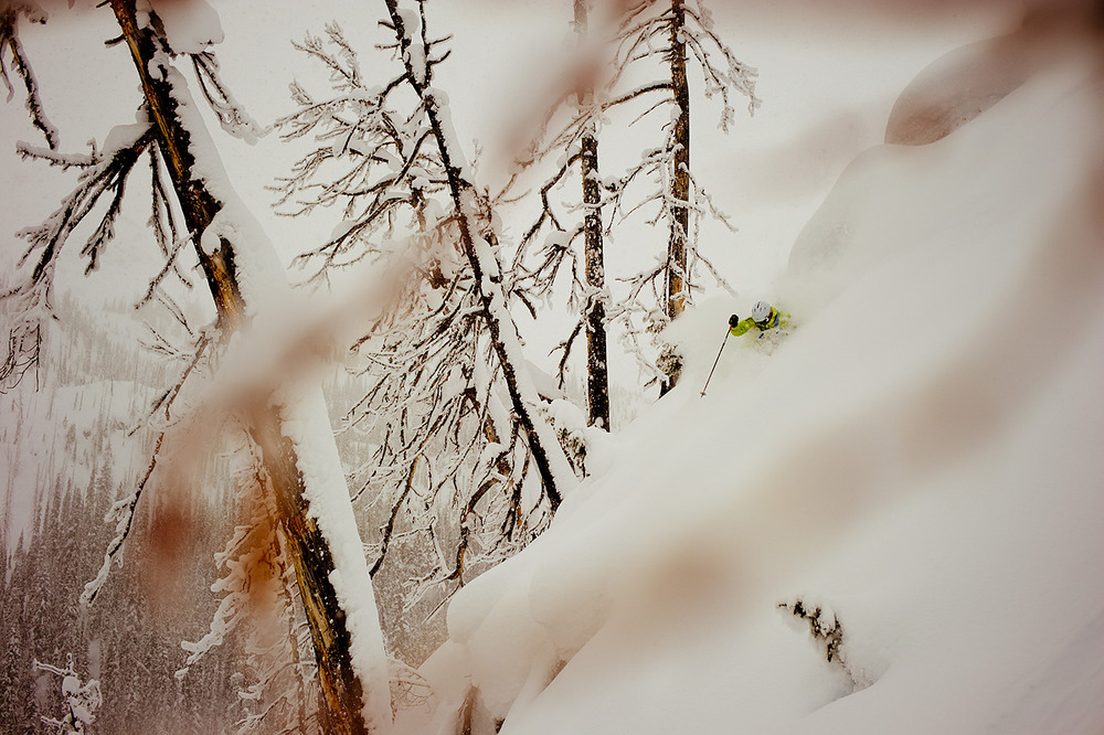 Dan Treadway finds his line through perfectly spaced burnt trees at Great Canadian Heli Skiing.