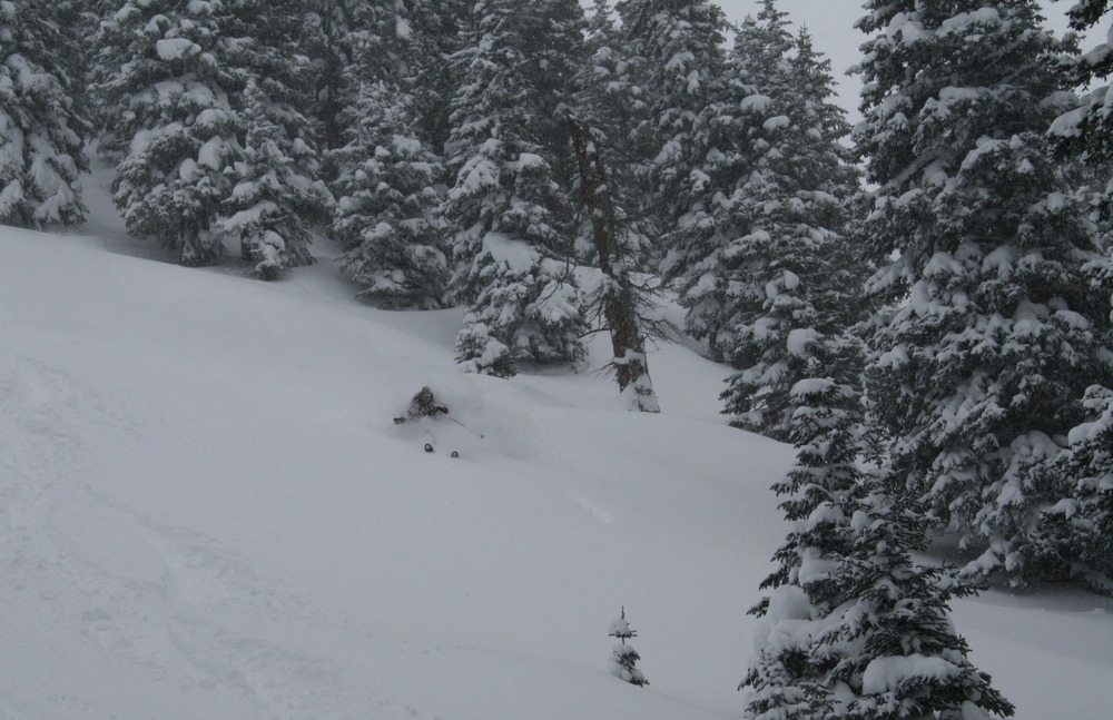 Owner/Operator/Guide Jenna Bartosz shredding Dales with Vail Powder Guides.