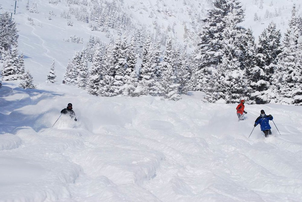 Bridger Bowl - ©Doug Wales