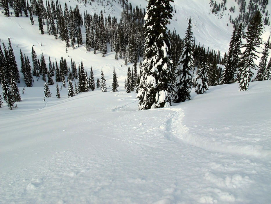 Fresh tracks at Island Lake.