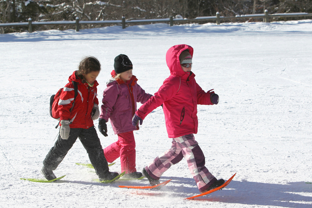 Snowshoeing is easy and fun - ©Maison du Tourisme Monts Jura