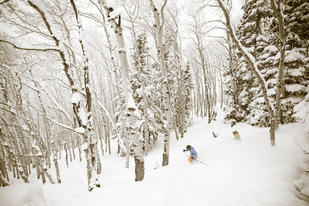 Get first tracks in Steamboat's legendary aspens from the Thunderhead Express quad - ©Liam Doran
