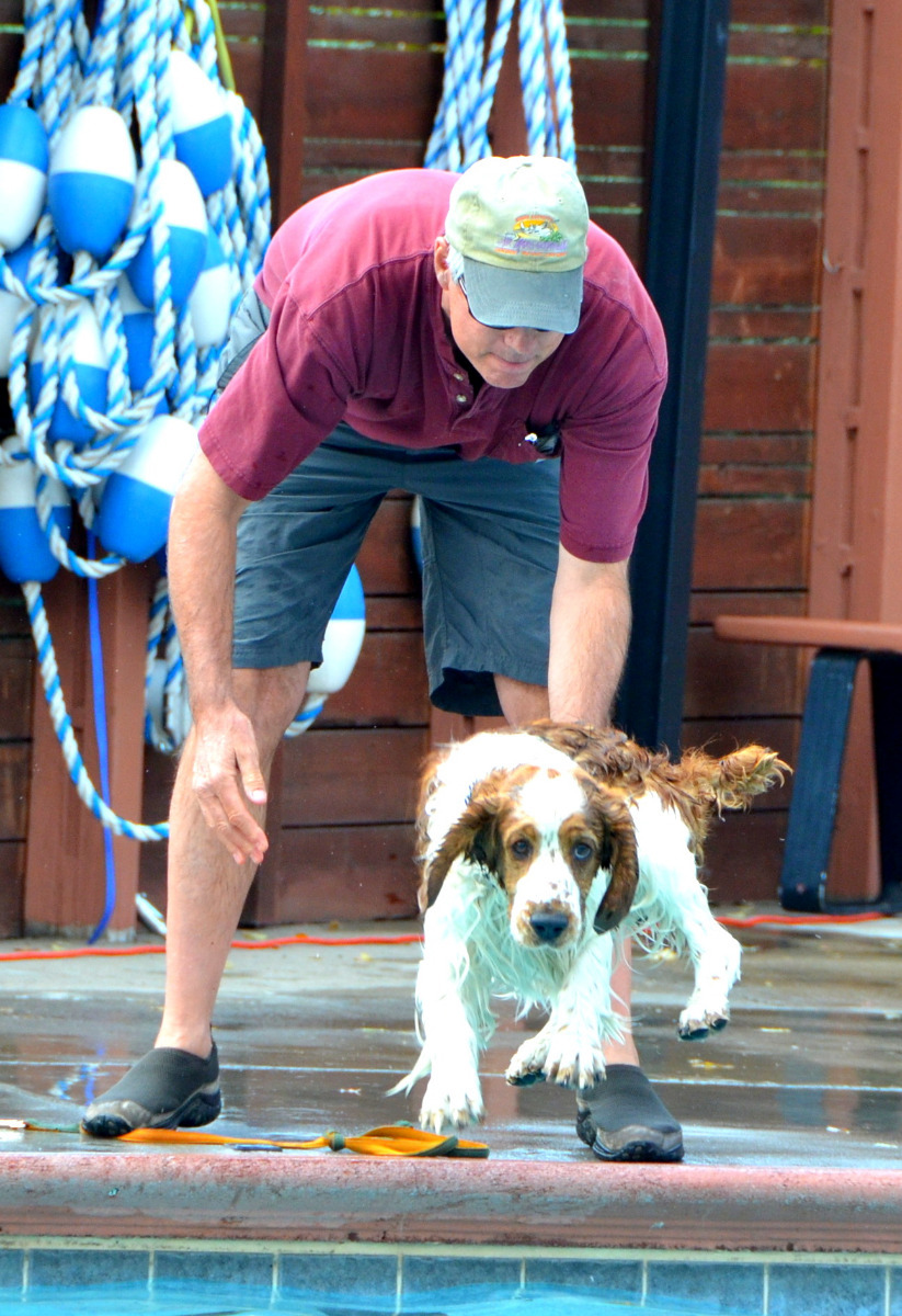 The Poochy Paddle is a bi-annual event at the Old Town Hot Springs in Steamboat Springs.
