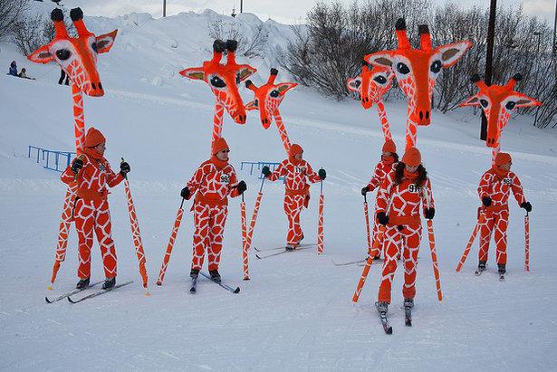 Skiers at the 2012 Alaska Ski for Women - ©Frank Kovalchek