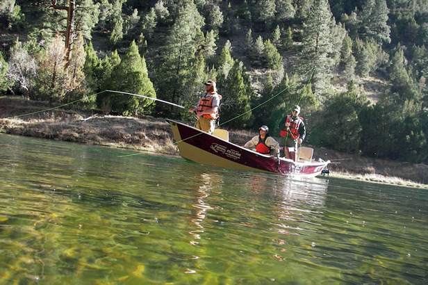 From Bend to Big Sky: The Best Fly-Fishing Trips