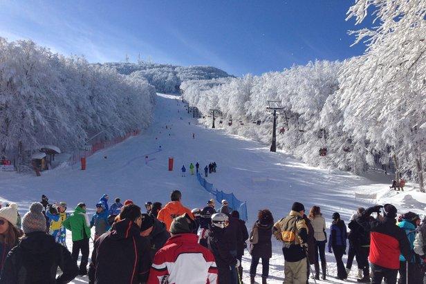 Monte Amiata - Crocicchio