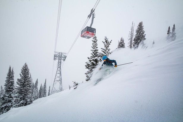Go Global: Mountain Collective New Additions - ©Jackson Hole Mountain Resort