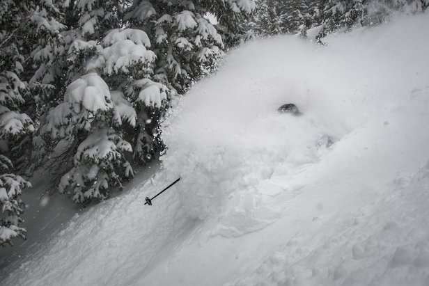 Snowiest Resort of the Week: 2.18-2.24 - ©Snowbird (@snowbird) // Chris Segal (@chris_segal) Skier: Eric Fabbri (@efabbri)