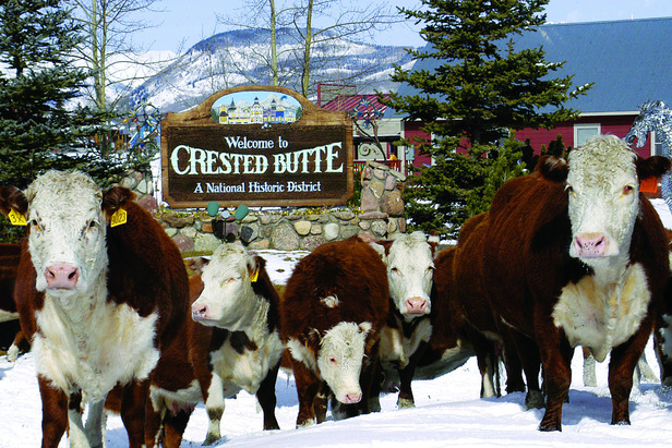 Crested Butte - ©Crested Butte