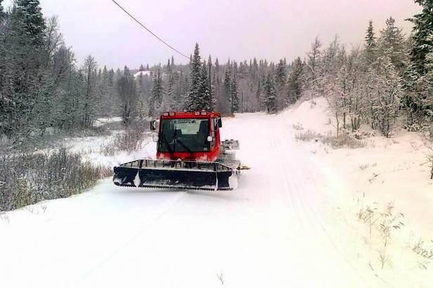Ål 2.11.2012 - ©Liatoppen