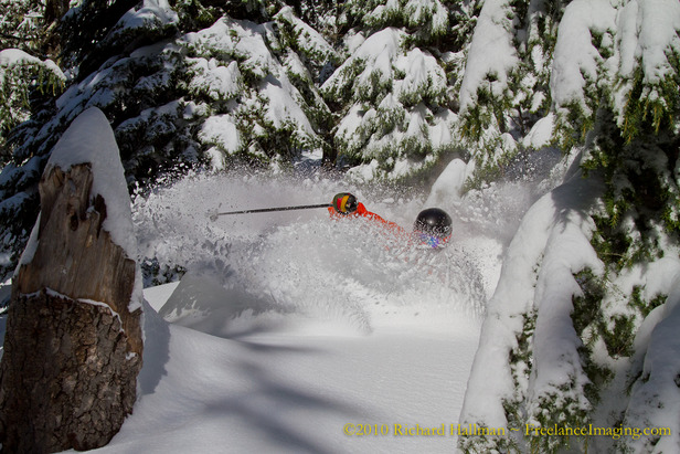 Mt Hood meadows tree skiing.com