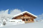 1.AGENCE ALPES IMMOBILIER