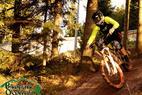Bikepark Oberhof - ©http://bikepark-oberhof.de/t-wood-trail