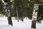 Can you find Elvis, John Denver & Hunter S. Thompson at Aspen/Snowmass?