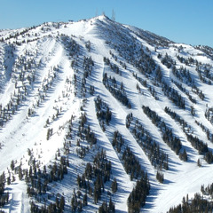 Mt. Rose main view