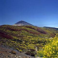 Blick auf den Teide, Teneriffa - ©Promotur Turismo Canarias, S.A.