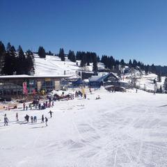 Schneevorhersage Feldberg