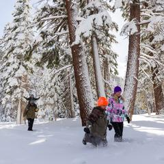 Fun and free in Mammoth - ©Mammoth Lakes Tourism
