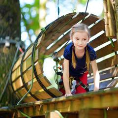 Hochseilgarten - ©Mn Studio | Fotolia.com