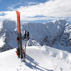 Snowbird skis