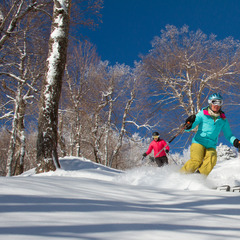 Christmas powder at Okemo Mountain Resort