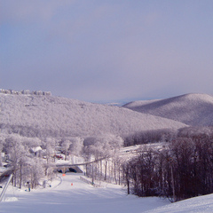 Snow coated trees in the rolling Blue Hill Mountains around Wintergreen. Photo Courtesy of Wintergreen Resort.