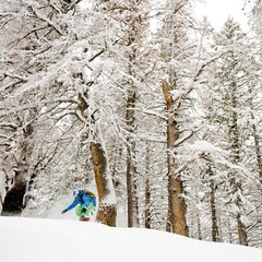 Wyatt Caldwell coming through the trees at Sun Valley.