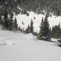 Owner/Operator/Guide Ben Bartosz shredding with Vail Powder Guides.