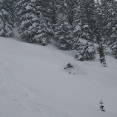 Owner/Operator/Guide Jenna Bartosz shredding Dales with Vail Powder Guides. - ©Vail Powder Guides
