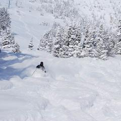 Bridger Bowl