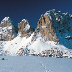 Universiade invernale 2013, Trentino