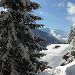 Fresh snow in Chamonix. Jan. 28, 2013