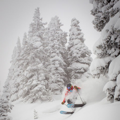 It's not uncommon to find powder while skiing at Vail. Depending on the day head to the trees for fresh stashes even a few days old.