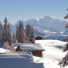 Soleil et neige fraiche aux Gets... - ©Les Gets