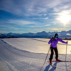 Cross Country Skiing at Målselv Fjellandsby