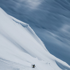 Searching for Spines - ©Niko Schirmer / Lars Andreas Nilsen