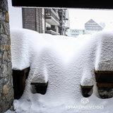 Oltre 50 cm di neve fresca nelle stazioni sciistiche del cuneese - © Prato Nevoso Ski Facebook