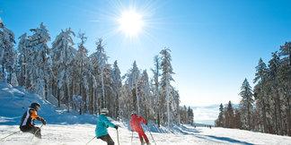 Beginnen met skiën in het Bohemer Woud ©OÖ.Tourismus/Erber