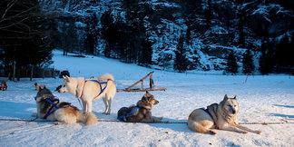 Évasion Mont Blanc : Combloux vs Les Contamines ©Zir